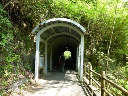 神龍湖櫻橋25