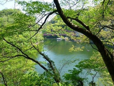 神龍湖櫻橋29