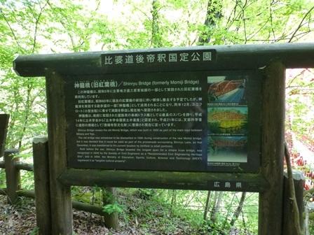 神龍湖櫻橋36