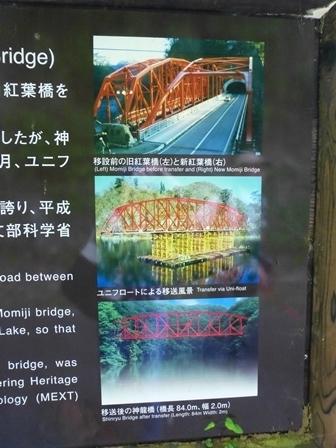神龍湖櫻橋38