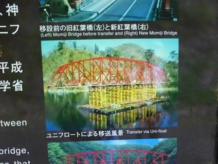 神龍湖櫻橋39