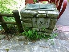 神龍湖櫻橋41