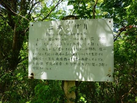 矢不立城址公園12