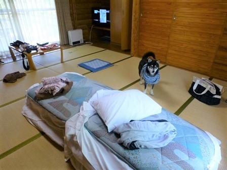 休暇村帝釈峡二泊目7