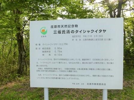 休暇村帝釈峡二泊目31