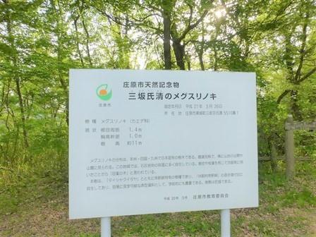 休暇村帝釈峡二泊目32
