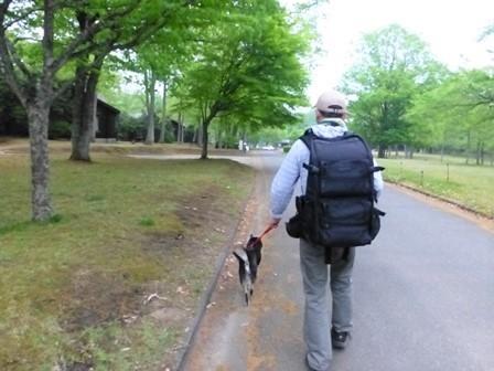 帝釈二泊朝のお散歩 (1)