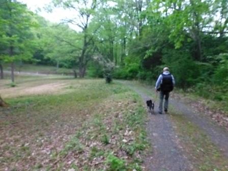 帝釈二泊朝のお散歩 (4)