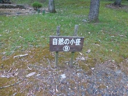 帝釈二泊朝のお散歩 (5)