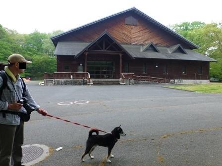 帝釈二泊朝のお散歩 (6)