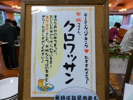 帝釈二泊朝のお散歩 (17)