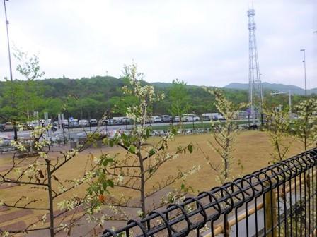 宝塚北SA (74)