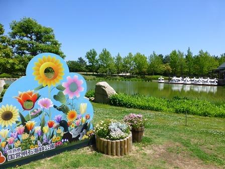 明石海峡公園7