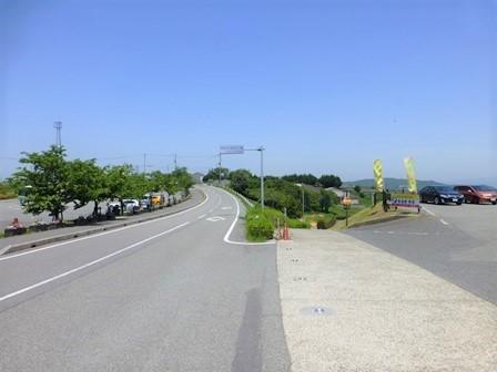 2018あわじ花さじき (1)