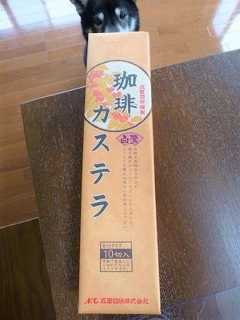 成田珈琲カステラ (1)
