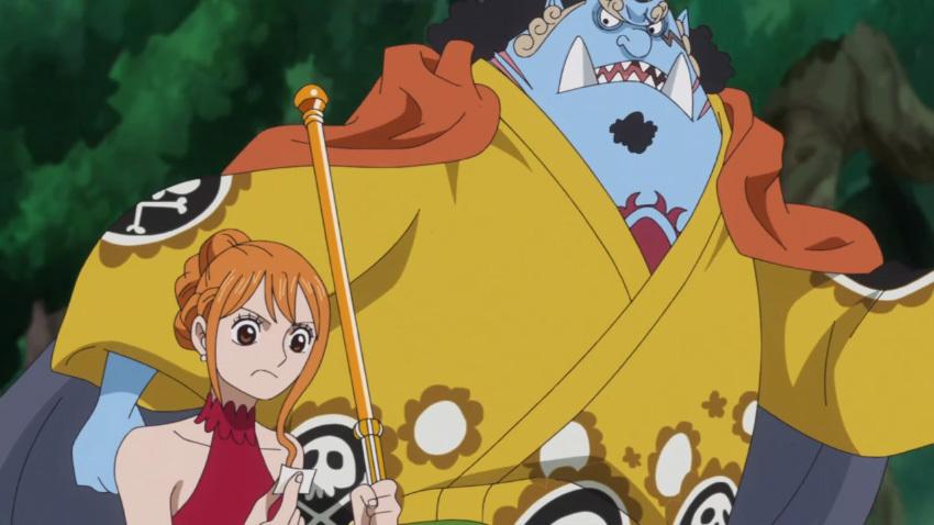 ワンピース ナミ アニメ