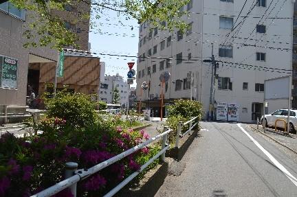 2018-04-21_41.jpg