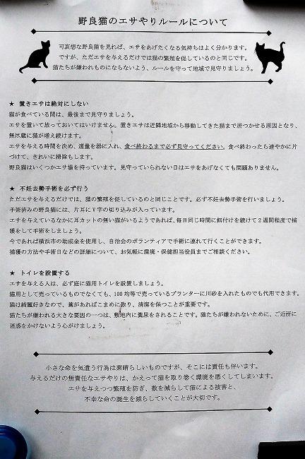ポスター2 (2)