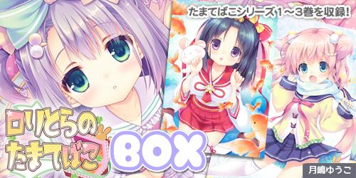 DL版_たまてばこBOX_幅500