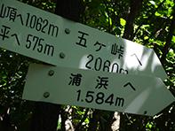 1808229.jpg