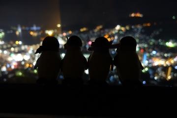 20180323-夜景 (1)