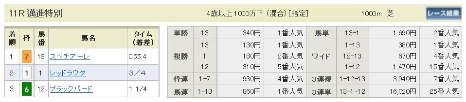 払戻金【300428】新潟11R(長生式馬券スタイル)