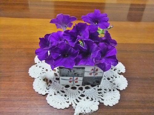 180818petunia_table