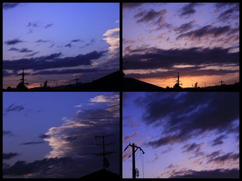 Collage_Fotor0817_convert_20180817080023.jpg