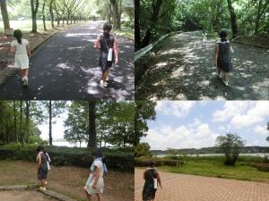 佐鳴湖公園3