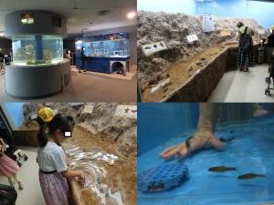 のと水施設15