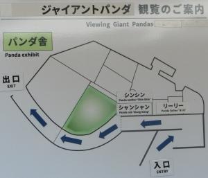 上野パンダ-11