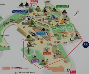 上野パンダ-5-1