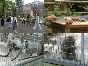 上野東園3