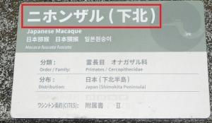 上野東園5-1