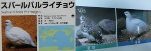 上野東園12