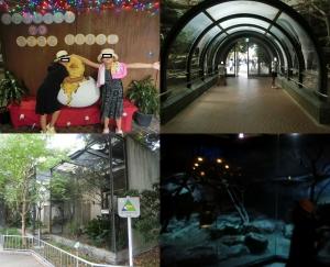 上野東園13