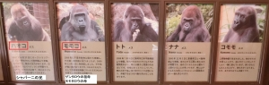 上野東園23-1