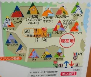 上野アフリカ2
