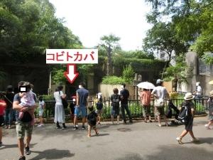 上野アフリカ14