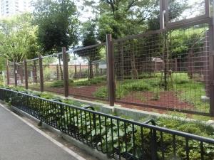上野アフリカ10
