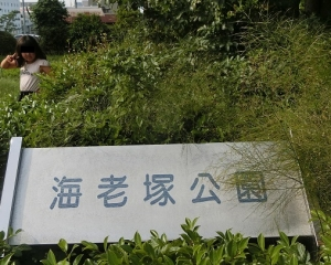 海老塚公園1
