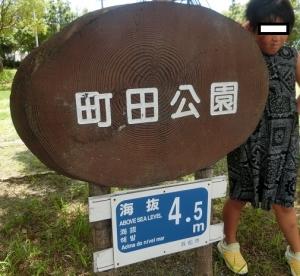 町田公園1