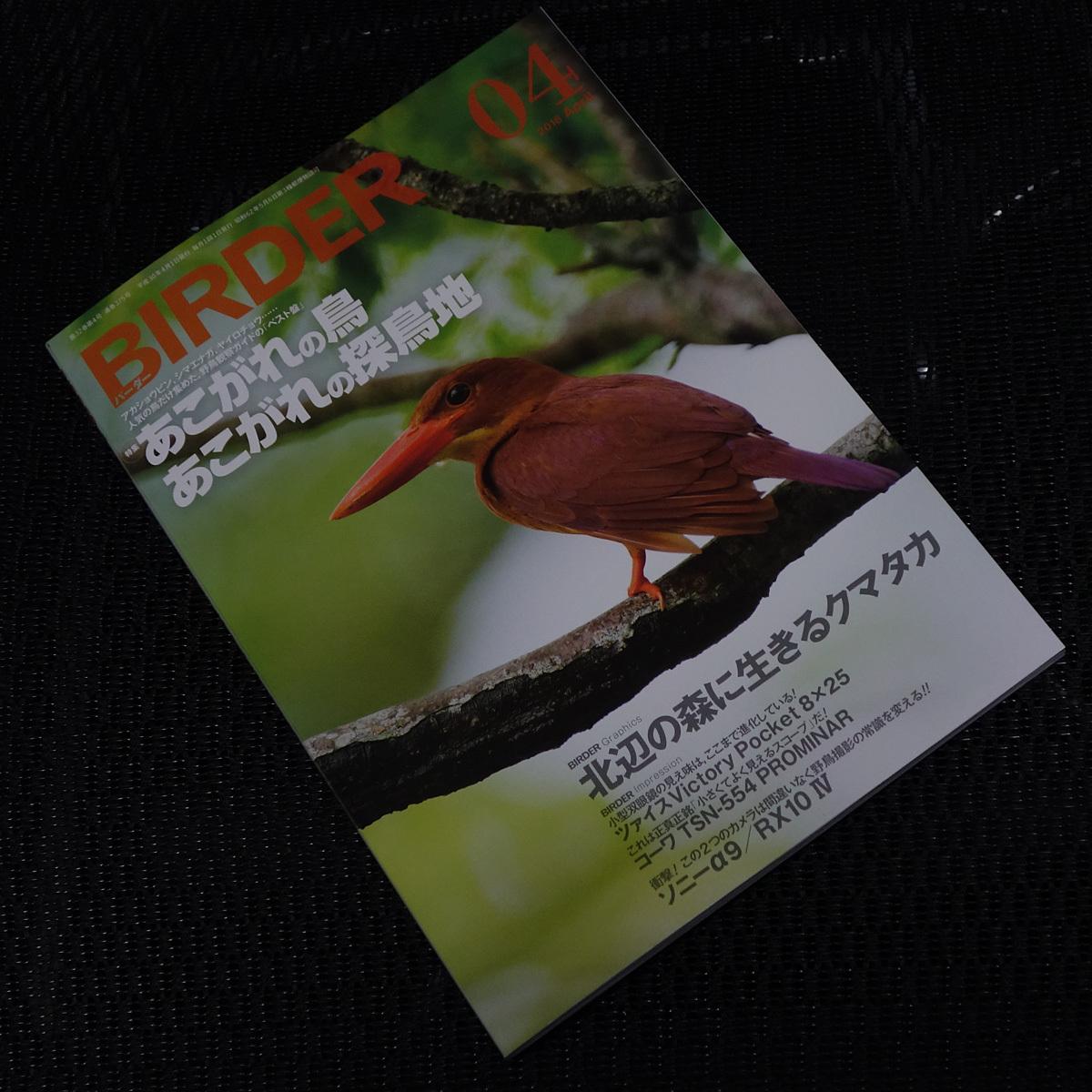 birder201804.jpg