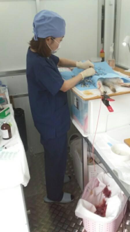 移動手術室トレイナー003