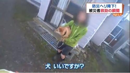 犬救助02