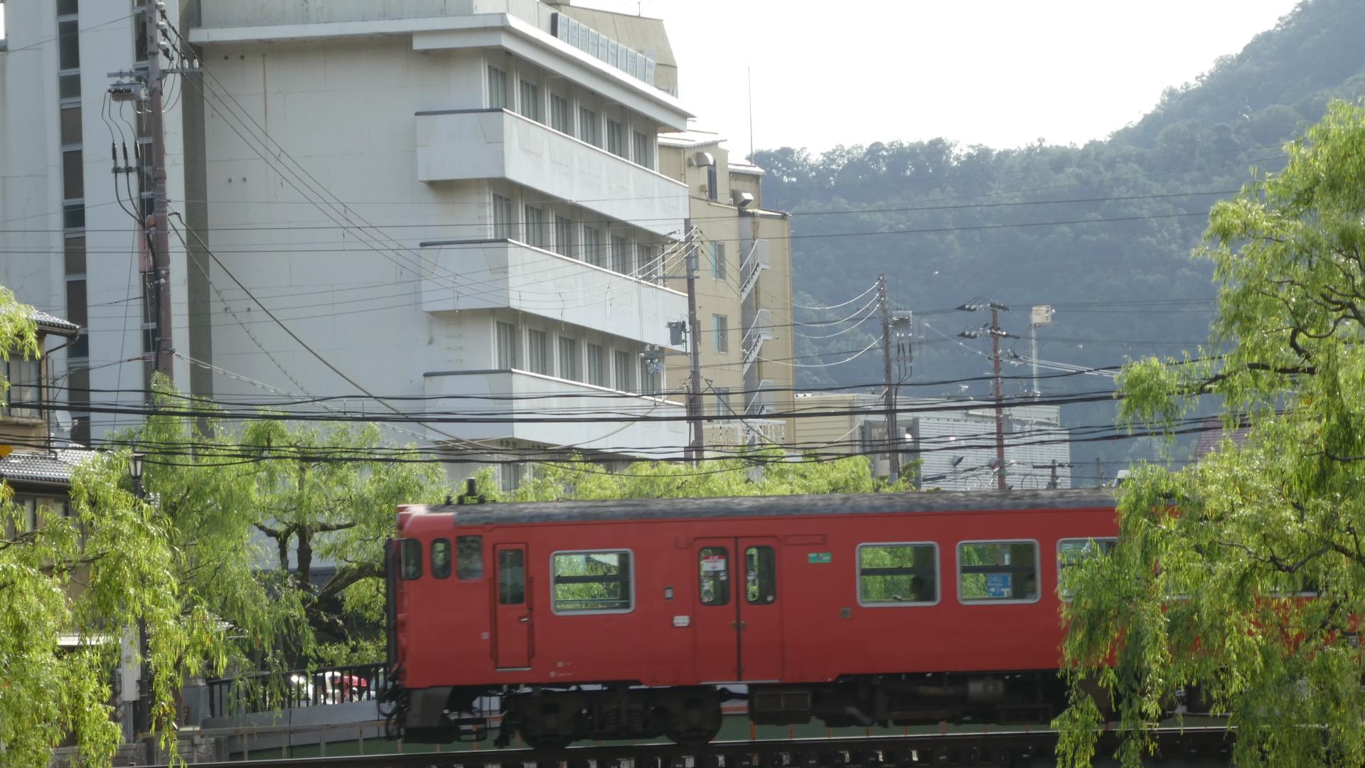 P1040807.jpg