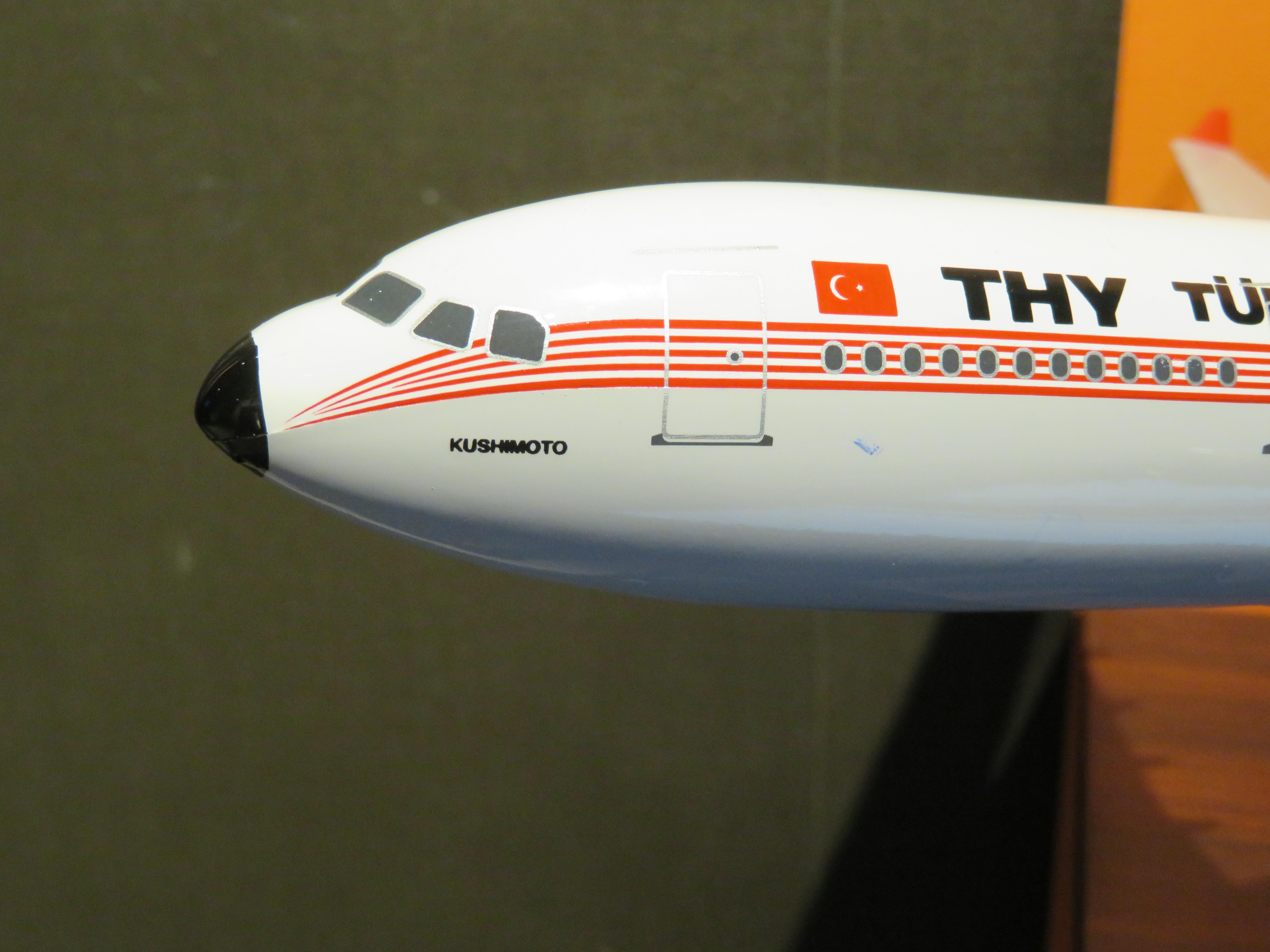 トルコ 飛行機 事故