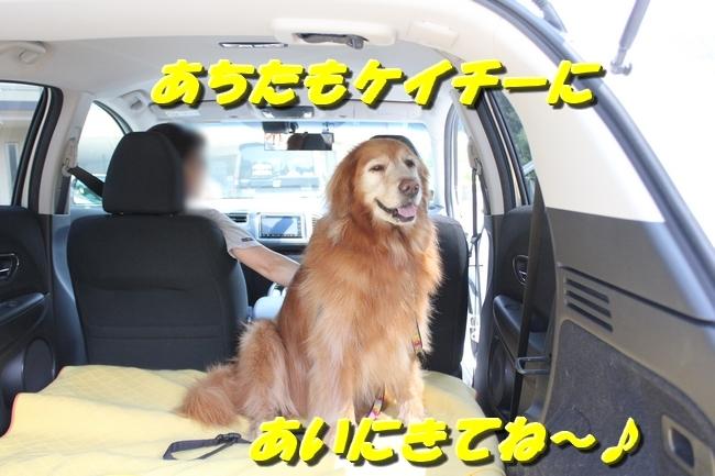 仁&ミミ41度車内写真 242