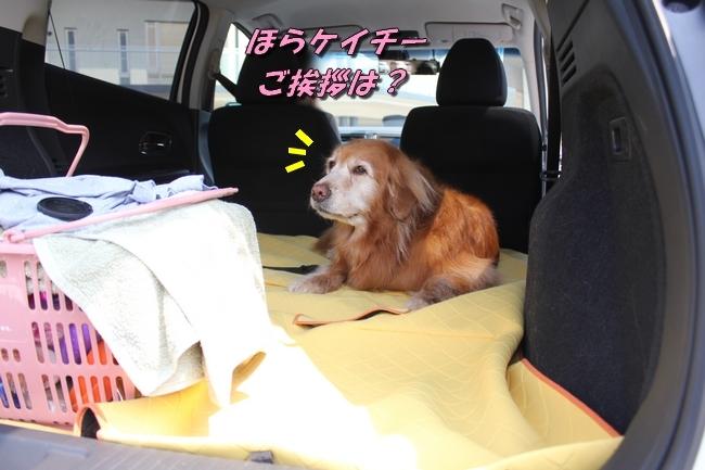 仁&ミミ41度車内写真 247
