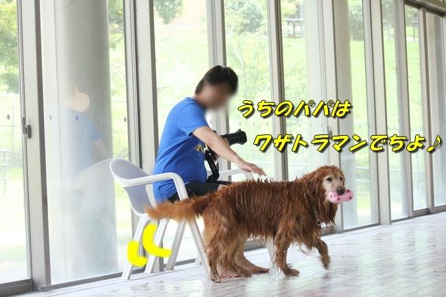 仁&ミミ41度車内写真 156